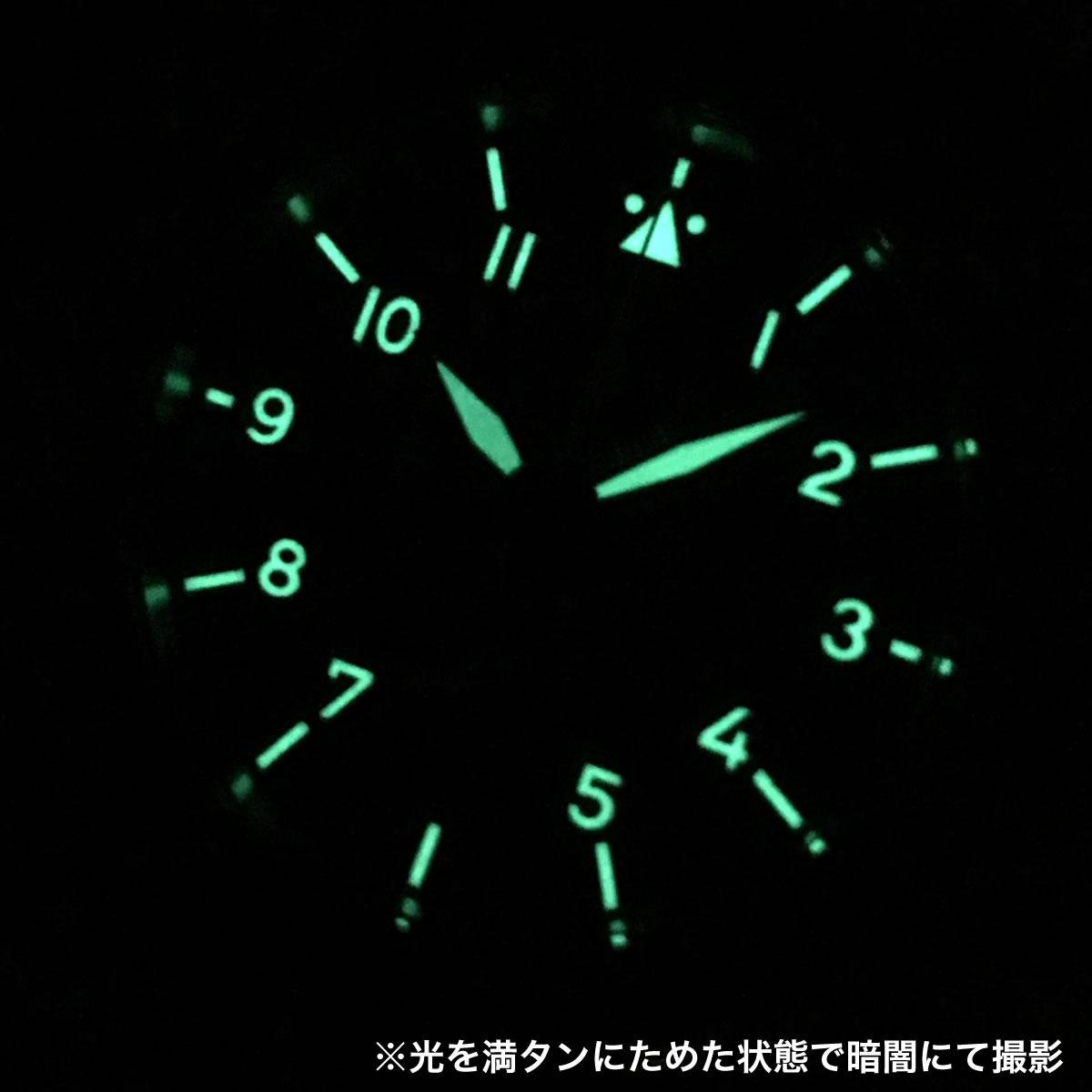 スーパールミノバインデックス・針 861915