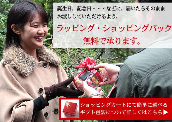 女性用腕時計 プレゼント 無料ラッピング