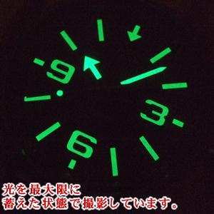 NH35A-5955196 蓄光塗料