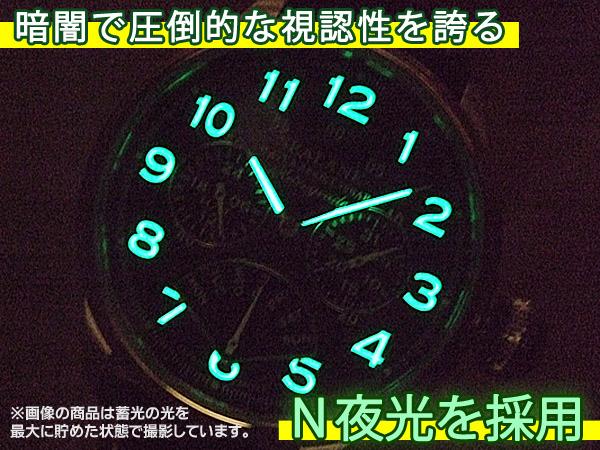 SEALANE(シーレーン) SE31-LBK N夜光 視認性