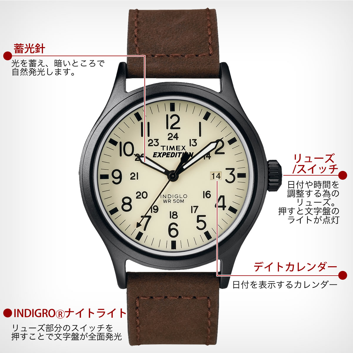 TIMEX Expedition  SCOUT クリーム×ブラウン 40mm T49963 機能詳細