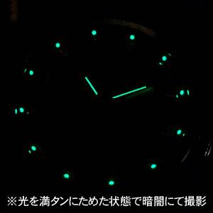 蓄光インデックス ビクトリノックス241666