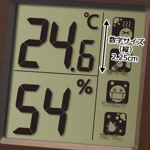 シチズン CITIZEN 温湿度計 ライフナビ648A【8RE648-A06】 液晶表示部分